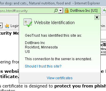 SSL in IE